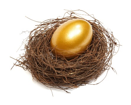 Gold egg in a real nest on white background